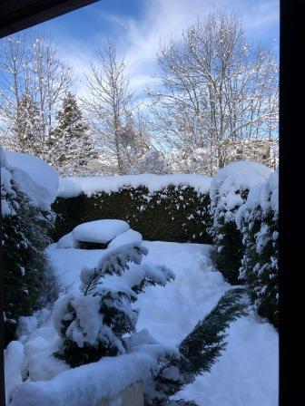 Jardin - Winter